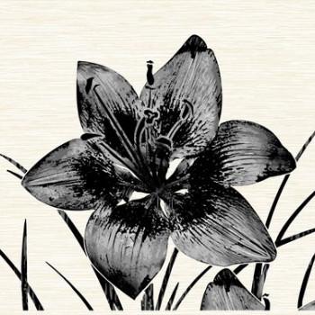 Нефрит-Керамика Декор Piano черный 25х40