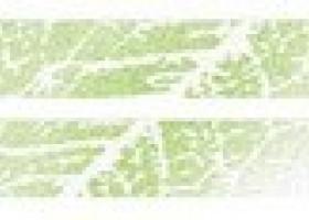 Нефрит-Керамика Бордюр Бостон салатный 3х50