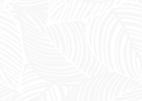 Нефрит-Керамика Амапола белый 33х33
