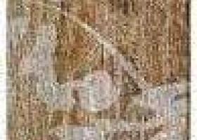 Керамический гранит Century Deco chv 8х40