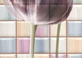 Rocersa Декор керамический Magic Decorado Frame C Mix 31.6х31.6