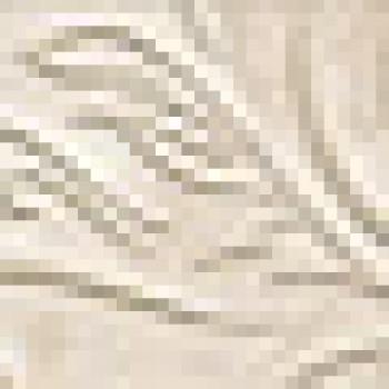 Плитка Unica Bianco Listello Leaf